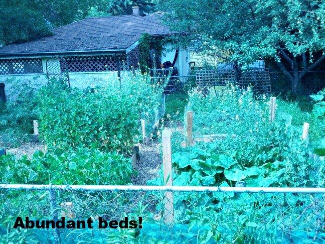 abundant beds sized