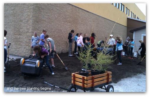 waldorf tree planting picnik