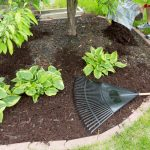 Early Mulching for Your Garden - Soil Kings - Landscape Supplies Calgary