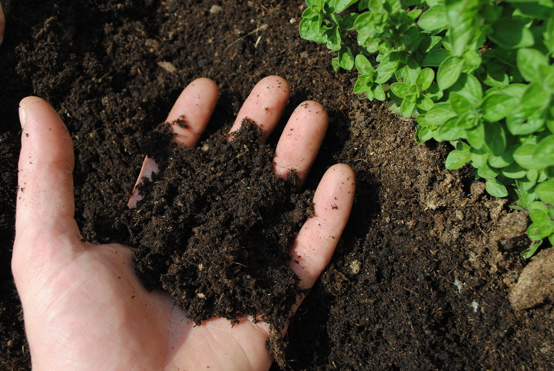 Everything You Need to Know About Worm Castings - Soil Kings - QUALITY BULK LANDSCAPE SUPPLIES
