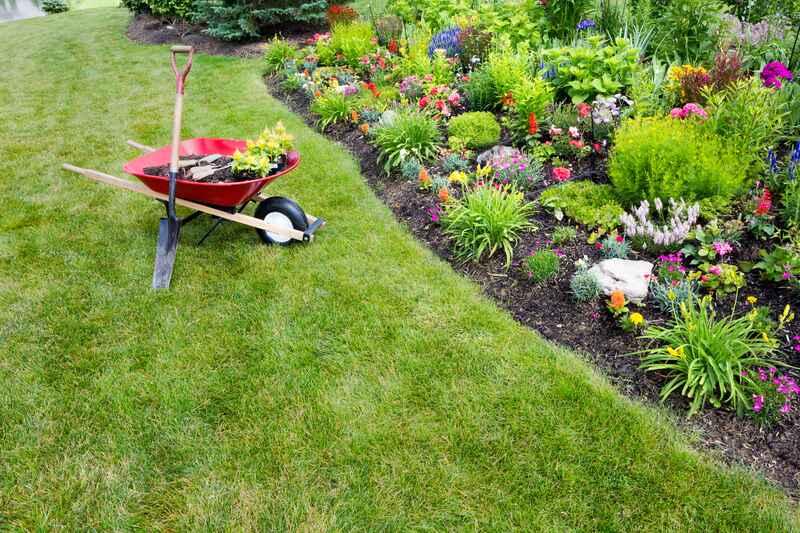 Practical, Low-Maintenance Landscaping Ideas - Soil Kings - QUALITY BULK LANDSCAPE SUPPLIES