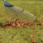 How to Prepare Your Lawn and Garden for Winter - Soil Kings - Landscape Products Calgary