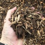 Benefits of Mulch Over the Winter - Soil Kings - Landscape Supplies Calgary