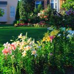 Choosing the Right Landscape Supplier - Soil Kings - Bulk Landscape Supplies Calgary