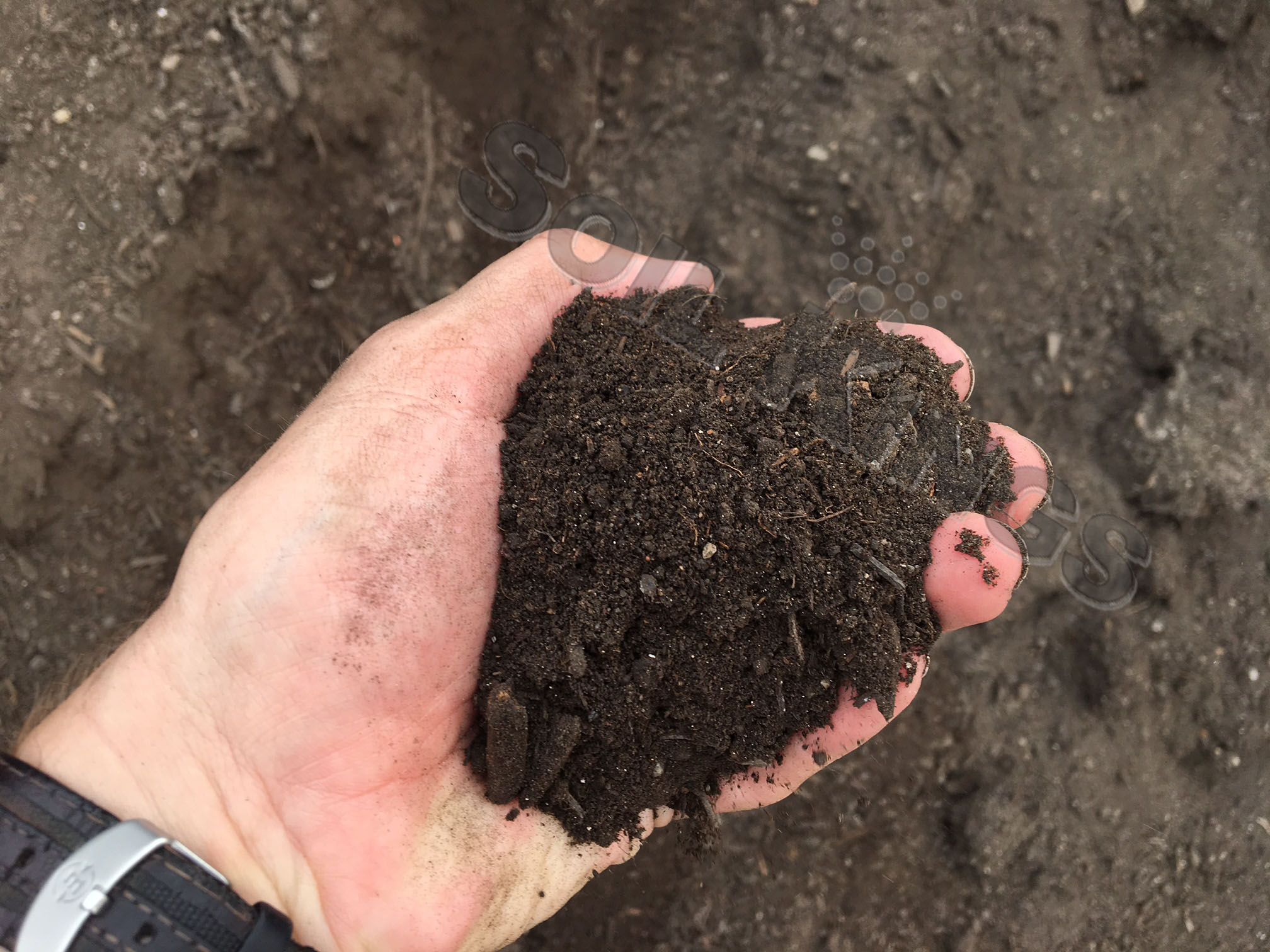 Why Picking Up from Soil Kings Is So Easy - Soil Kings - Bulk Landscaping Supplies - Featured Image