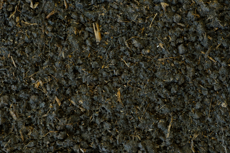 Why Do We Offer So Many Different Types of Soil? - Soil Kings - Bulk Landscaping Supplies Calgary - Featured Image