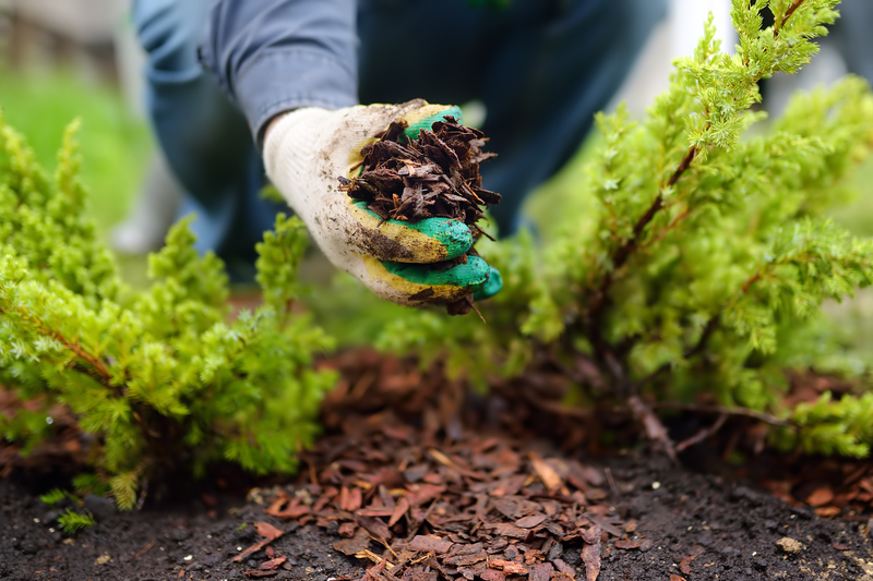 3 Tips for Summer Yard Improvement - Soil Kings - Bulk Landscaping Supplies - Featured Image